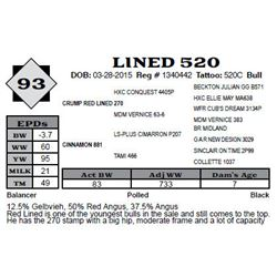 Lot 93 - LINED 520