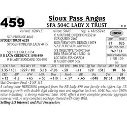 Sioux Pass Angus