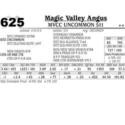 Magic Valley Angus