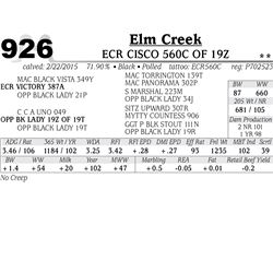 Elm Creek