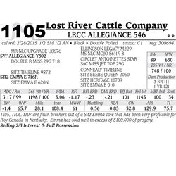 Lost River Cattle Company