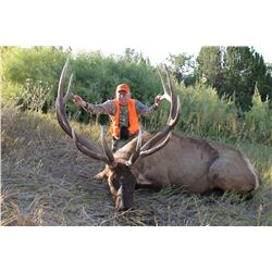 2017 Utah Fillmore, Pahvant Landowner Elk Permit, Hunter's Choice