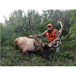2017 Utah Book Cliffs, Bitter Creek/South Multi Season Conservation Elk Permit