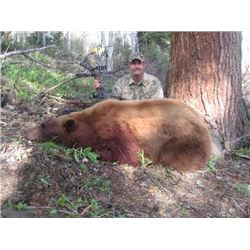 2017 Utah La Sal Bear Multi Season Bear Conservation Permit