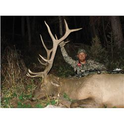 2017 Utah Plateau, Fishlake/Thousand Lakes Multi Season Premium Elk Conservation Permit