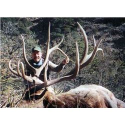 Limited Entry Elk, Mule Deer or Barbary Sheep hunt for Two (2) Hunters in Southern New Mexico