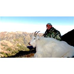 2017 Utah North Slope/South Slope, High Uintas West Mountain Goat Conservation Permit