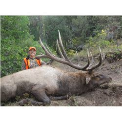 2017 Utah Fillmore, Pahvant Landowner Elk Conservation Permit - Hunter's Choice