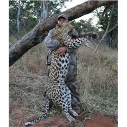 10- Day Leopard Hunt in Zimbabwe for One (1) Hunter