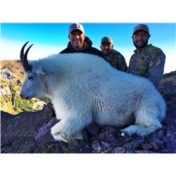 2017 Utah Mountain Goat Conservation Permit – Beaver (Early)
