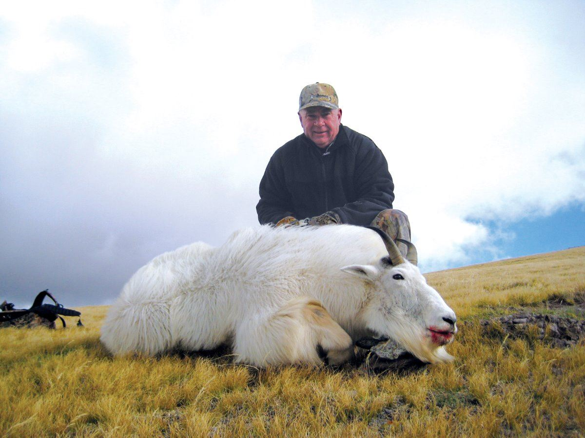 2017 utah mountain goat conservation permit beaver early for Utah fishing license cost
