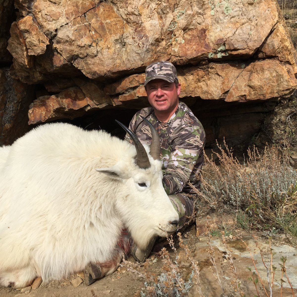 2017 utah statewide mountain goat conservation permit for Utah fishing license cost 2017