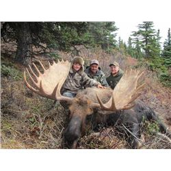 10-Day Moose Hunt for (1) Hunter - Full Curl Stone BC