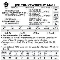 Lot 9 - JVC TRUSTWORTHY 44401