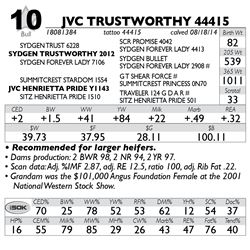 Lot 10 - JVC TRUSTWORTHY 44415
