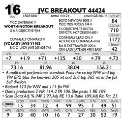 Lot 16 - JVC BREAKOUT 44424