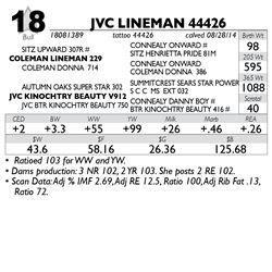 Lot 18 - JVC LINEMAN 44426