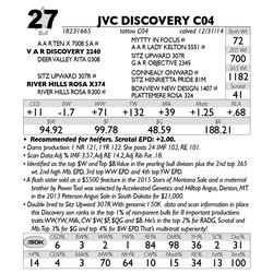 Lot 27 - JVC DISCOVERY C04