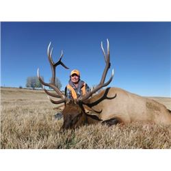 *Colorado – 5 Day – Rocky Mountain Elk Hunt for One Hunter