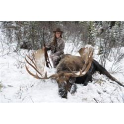 *British Columbia -7 Day – Canada Moose Hunt for One Hunter