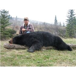 *Alberta– 7 Day- Black Bear Hunt for Two Hunters