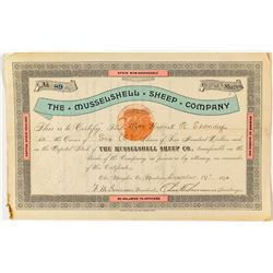 The Musselshell Sheep Company Stock Certificate