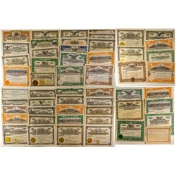 Montana Oil Stock Certificate Collection 2