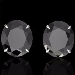 Natural 18 CTW Black Diamond Certified Designer Solitaire Stud Earrings 18K White Gold - 21695-REF#-