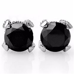 Genuine 3.75 ctw Black & White Diamond Solitaire Stud Earrings 14K White Gold - 11855-#66G7R