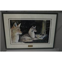 "Framed limited edition print ""Summer Coyote Family"" pencil signed by artist John Stone 179/950"
