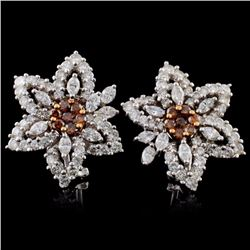 18K White Gold 5.54ctw Fancy Color Diamond Earring