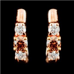 14K Gold 0.51ctw Fancy Color Diamond Earrings