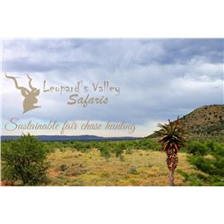 Leopard's Valley 12 Day Safari for 2