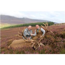 International Adventures 3 day Red Stag hunt for 1 hunter
