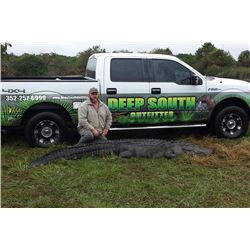 Deep South Outfitter - Alligator Hunt