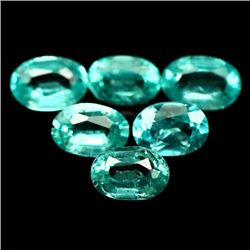 LOT OF 5.41 CTS OF GREEN MADAGASCAR APATITES