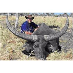 5 Day Australian bronze medal water buffalo hunt for 1 hunter