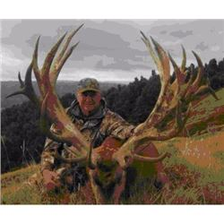 5-Day Silver Hunting package for Red Stag, Bull Tahr and Buck Chamois     for 1 hunter
