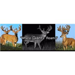 "3 day, 3 night SCI 180"" to 200"" whitetail hunting trip for 2 hunters"