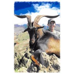 "1-day Trophy ""Hawaiian"" Goat Hunt for 1 hunter"