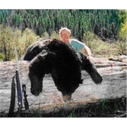 6-Day guided Montana Spring or Fall Black Bear and Turkey Hunt for 1 hunter