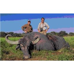 6-Day Asian Water Buffalo, Black Buck Antelope and Dove hunt for 2 hunters