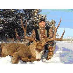5-Day Alberta Mule Deer/Whitetail Archery Combo Hunt for 1 hunter