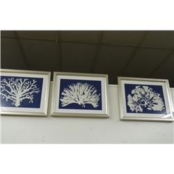 3 Framed Prints - 3 Times the Money