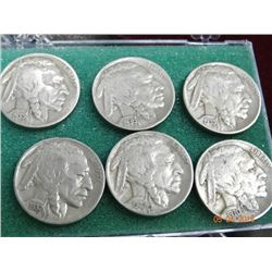 A Herd of Buffalo Nickels