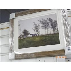 "Framed Print ""Horse & Meadow"""