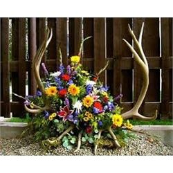 Floral Arrangement with Antlers