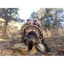 Three Day Turkey Hunt In New Mexico.