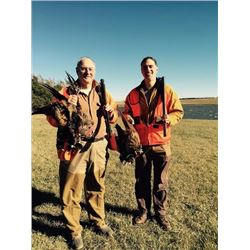 SOUTH DAKOTA PHEASANT HUNT FOR TWO HUNTERS
