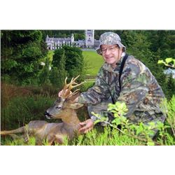 Scottish Royal Estate Roe Deer Hunt for One Hunter